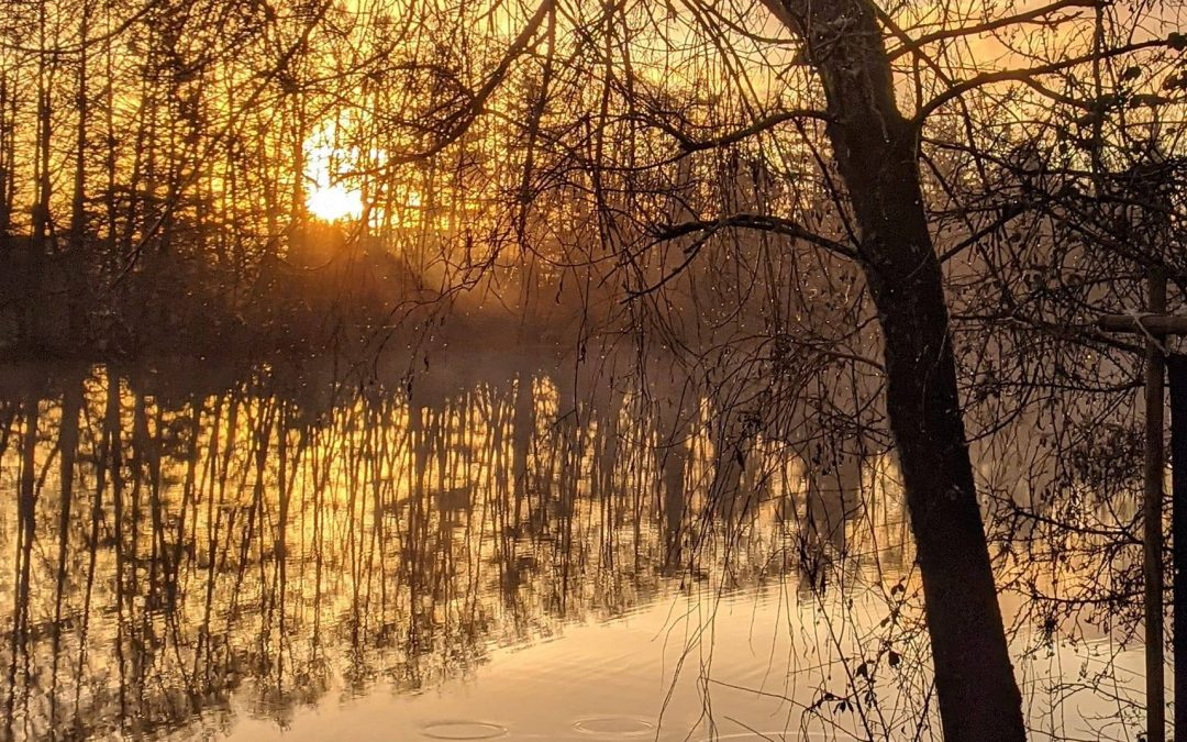 Een ongelooflijke kans om op enkele fantastische plekken te vissen